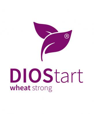 DIOStart® wheat strong